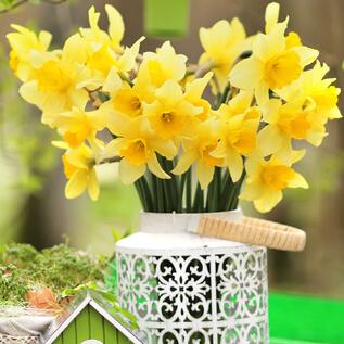 Flower gifts Donna Lee Gardens