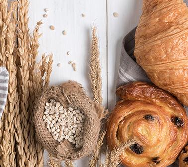 Bakery Gift Baskets Delivered to Washington