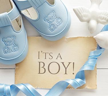 For Boys Gift Baskets Delivered to Washington